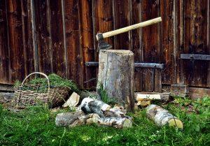 לכרות עץ