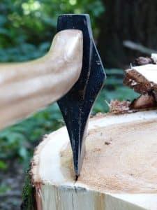 איך אפשר לכרות עץ?