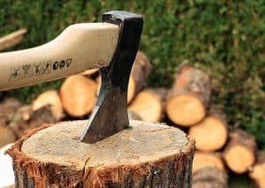 כריתת עצים בבית פרטי ובשטח פרטי